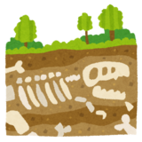 埋蔵文化財の試掘について